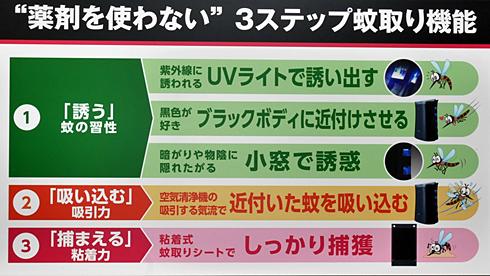 ts_katori02.jpg