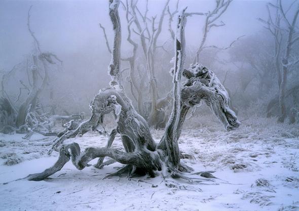 五十嵐健一写真展「知られざる絶景 —美しき天然—」