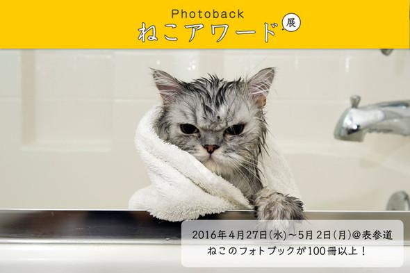 「Photoback ねこアワード展」