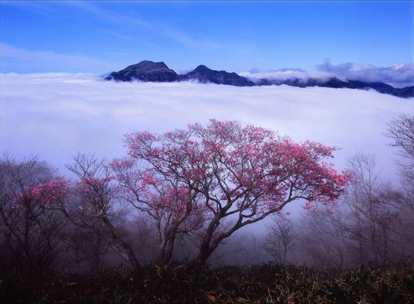 第6回 日本風景写真協会選抜展「四季のいろ」