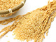 なぜ玄米が美味しく炊けるのか? 三菱「本炭釜 KAMADO」の加熱技術に迫る