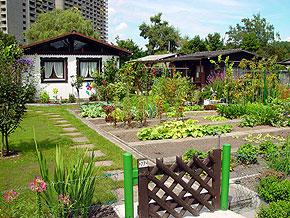 ay_garden01.jpg