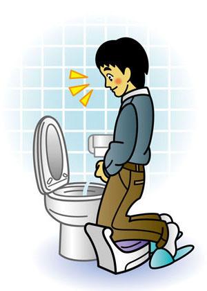 yd_toilet.jpg