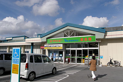 ay_okinawa01.jpg