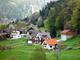 200年前の森林破壊から学んだ——ドイツ・黒い森の持続可能な森林管理