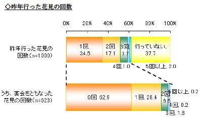 yd_hanami2.jpg