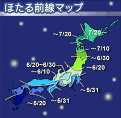 ah_hotaru.jpg