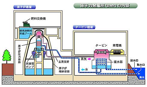 yd_fukusima2.jpg
