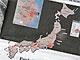 「原発事故」報道を検証する——海外と日本ではこれほど違う