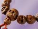 """郷好文の""""うふふ""""マーケティング:ドクロの数珠を若者に——「祈りの多様化」に商機あり"""