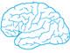 運動する人は、なぜ頭の回転がいいのか