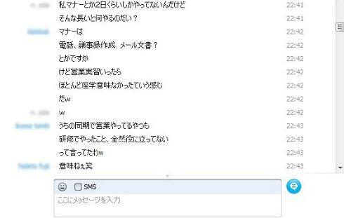 ns_skype2.jpg