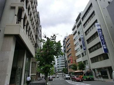 yd_kabu.jpg
