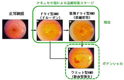 yd_kubota02.jpg