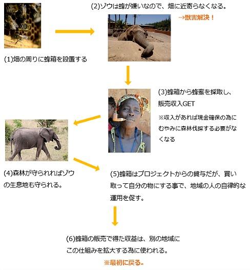 ks_project.jpg