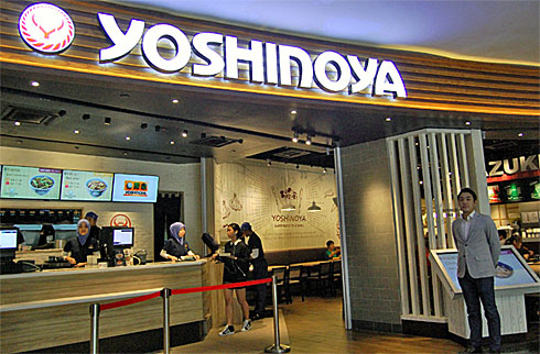 yd_yoshino1.jpg