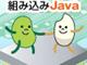 組み込みJavaのいま−携帯電話、Blu-rayに続くモノ