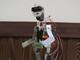 次は「サッカー」「ダンス」だ!——「神戸こどもロボットクラブ」で二足歩行プログラミング体験
