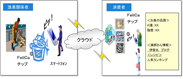 「水産クラウドを活用した商品表示プラットフォーム実証研究」のイメージ