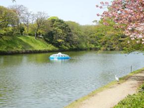 福岡市舞鶴公園内に設置されていた際の模様
