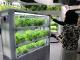 製造ITニュース「植物工場・スマートアグリ展」:野菜の工場生産本格稼働へ——成否のカギは出口戦略と製造マネジメント