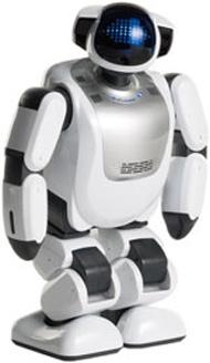 コミュニケーションパートナーロボット「PALRO(パルロ)」