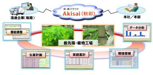 植物工場における「Akisai」の活用イメージ