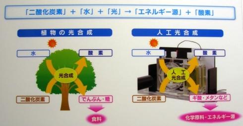植物の光合成(左)と人工光合成の比較