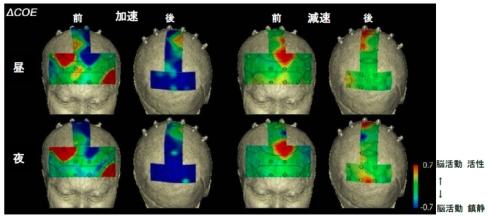 脳活動の可視化の状況