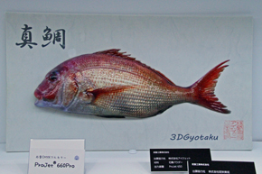 rk_140627_dmsphoto03_fish.jpg