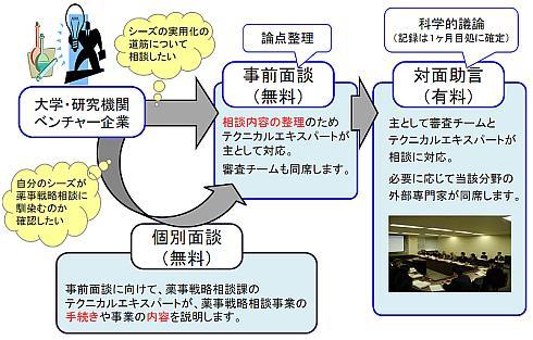 薬事戦略相談のプロセス