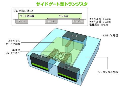 図2 CNTゴムトランジスタの構造