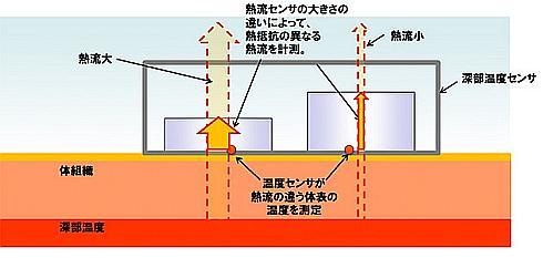 超小型センサーの構造と体温計測の仕組み