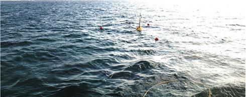 海上に浮かぶWi-SUN搭載ブイ