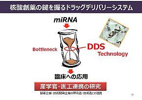 マイクロRNAを体内に届けるDDS