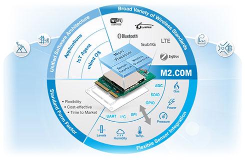 Photo03:こちらもM2.COMのサイトより