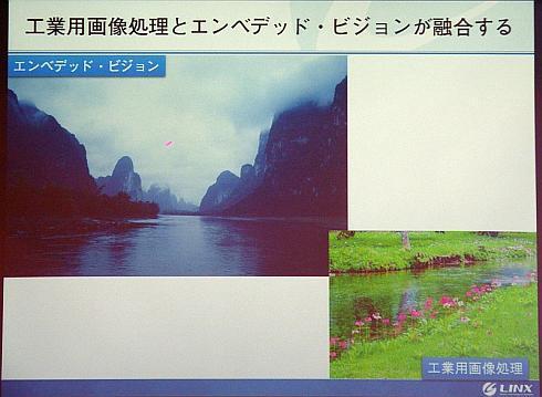 工業用画像処理市場が小川(右下)とすれば、エンベッデド・ビジョン市場は大河(左上)だ(クリックで拡大) 出典:リンクス