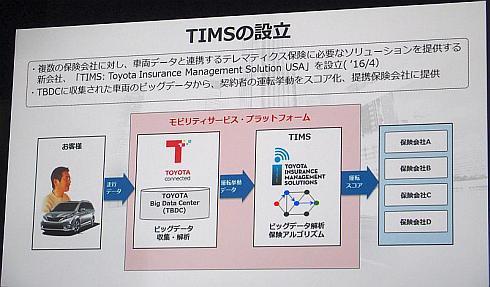 TIMSの設立