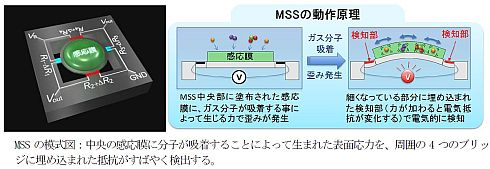 MSSの模式図と動作原理