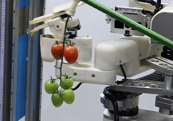 2017国際ロボット展:未熟で青いトマトは取らない、農作物の収穫をお手伝いするロボットなどパナソニックが展示 (1/2)