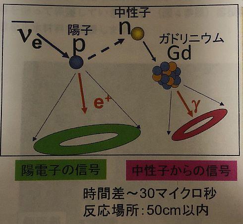 タンク内の水と反電子ニュートリノが反応した場合のイメージ
