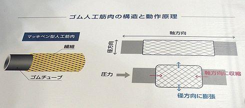 ゴム人工筋肉の構造と動作原理