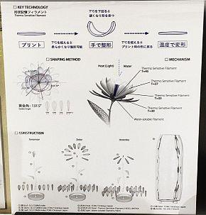 「4D Flower」の説明パネル