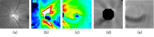 5種類の入力画像のサンプル(クリックで拡大) 出典:理化学研究所