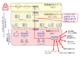 IEC62443による産業制御セキュリティ向けソリューション強化、マクニカが協業で