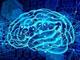 AIを用いた胃がん内視鏡画像読影支援システムの開発を開始