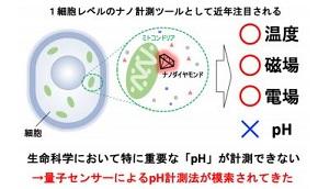 ダイヤモンド量子センサーの計測対象 出典:京都大学