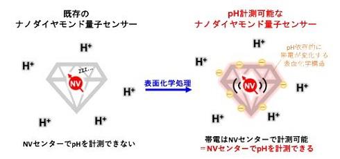 ナノダイヤモンド量子センサーを用いたpH計測法 出典:京都大学