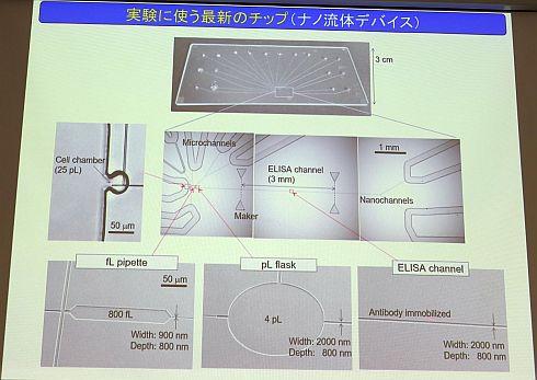 北森氏が研究を進めているナノ化学チップの構造