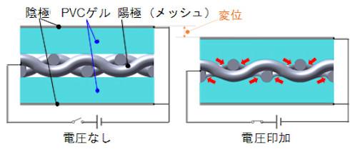 PVCゲルアクチュエーターの構造の断面イメージと変形イメージ